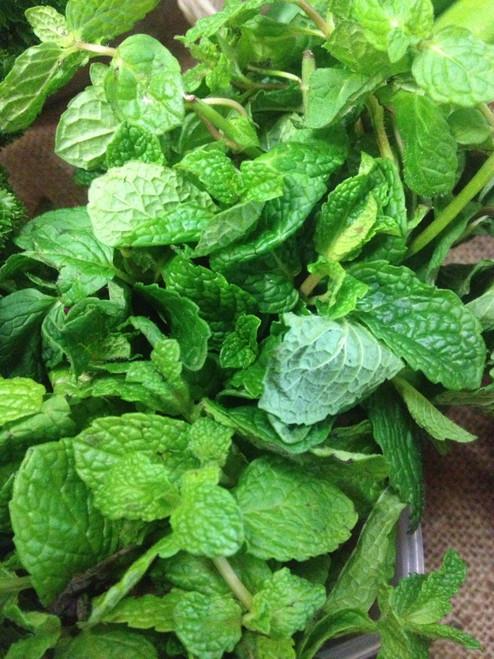 Mint Organic - Bunch