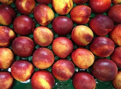 Nectarines Yellow Organic - per kg