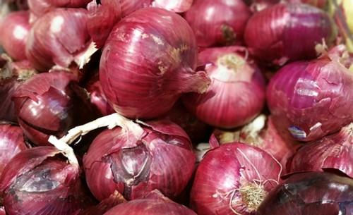 Onions Red Salad Organic - per kg