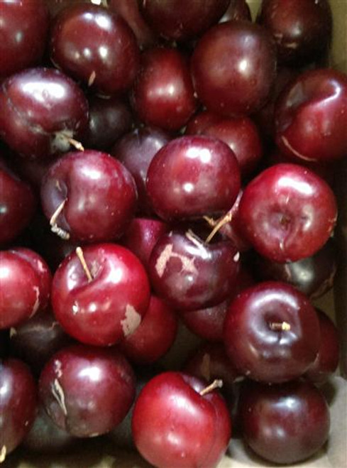 Plums Blood Organic - per kg