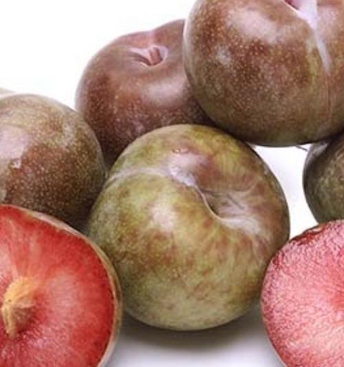 Plums Candy Apple Organic - per kg