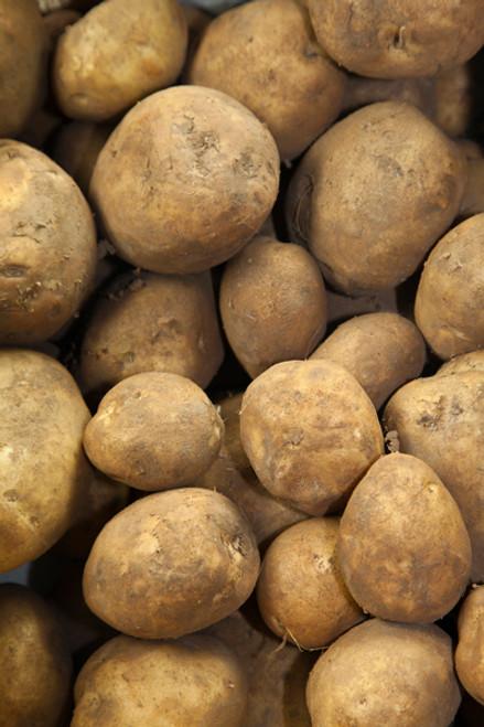 Potatoes Sebago Organic - per kg