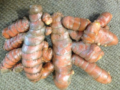 Turmeric Fresh Organic - per 100g