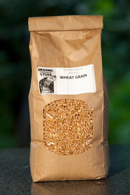 Wheat Grain Organic Bulk per 1kg - ONS