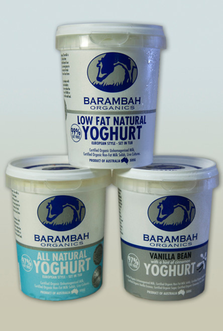 Yoghurt Bush Honey Organic 500g - Barambah