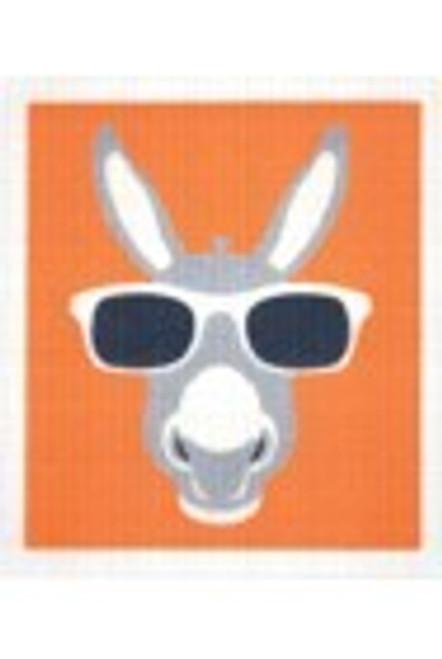 Sponge Dishcloth 100% Biodegradable Donkey - RetroKitchen