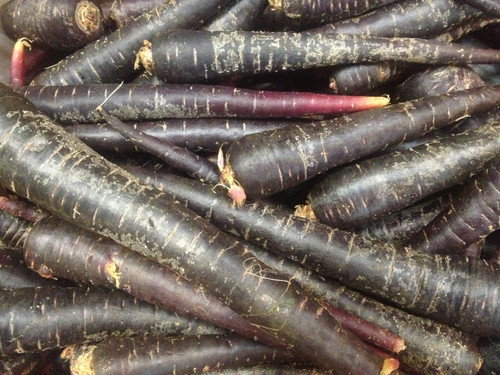 Carrots (Purple) Organic - per kg