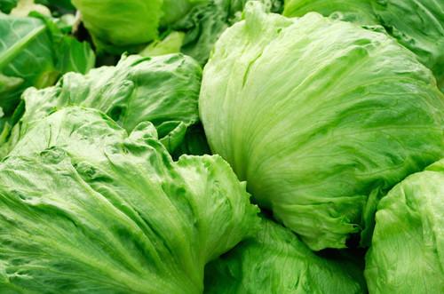 Lettuce Iceberg Organic - each