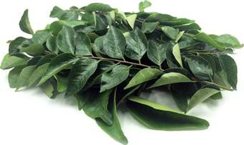 Curry Leaves Chemical Free Local - Bunch