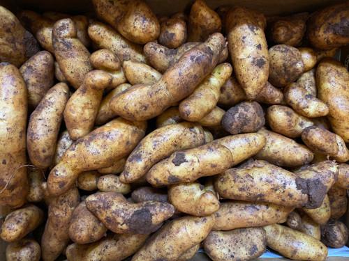 Potatoes Kipfler Organic - per 500g
