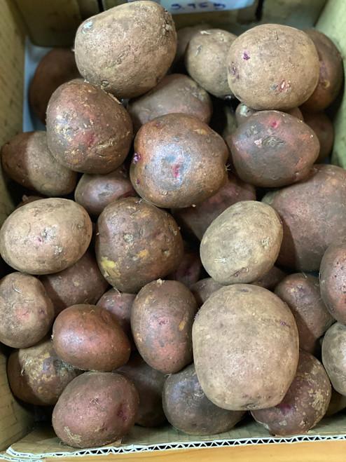 Potatoes Pontiac Organic - each (approx.) (med-large)