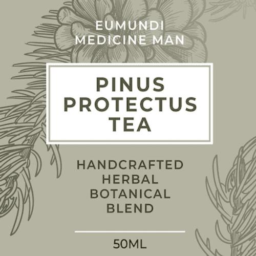 Ayurvedic Health - Pinus Proctectus Tea - Pine needles 50ml