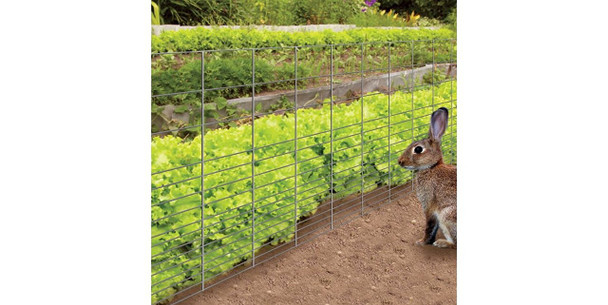 16 Gauge Galvanized Rabbit Guard Garden Fence