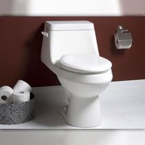 Crown Fair Single One Piece Flush Toilet
