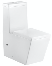 Crown Ego Dual Flush One Piece Square Modern Toilet