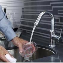 American Standard Pekoe Collection Pekoe 1-Handle Bar Sink Faucet