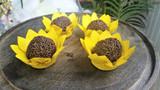 Pointy Sunflower Blue Chocolate Truffle Wrapper. Forminha para doces Girasol