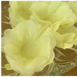 Delicate, silky open flower Chocolate Truffle Wrapper. Forminha para doces.