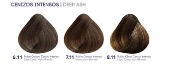 Hidracolor Creme Hair Color Dark Deep Ash Blonde 6.11