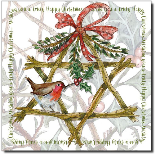 STAR & ROBIN PACK OF 6 CHRISTMAS CARDS