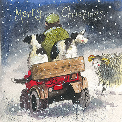 Collies Christmas Pack