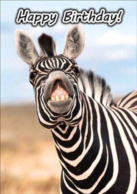 Happy Birthday (Grinning Zebra)