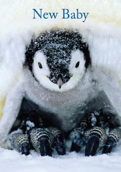 New Baby (Penguin) Greeting Card