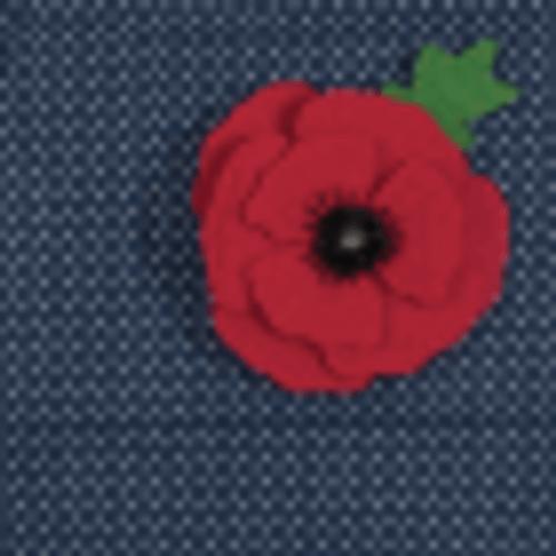 """poppy  Felt Decoration Kit"""""""