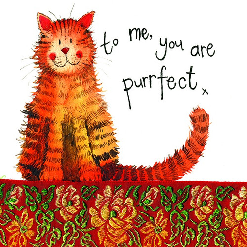 Purrfect Cat Little Sparkles Card