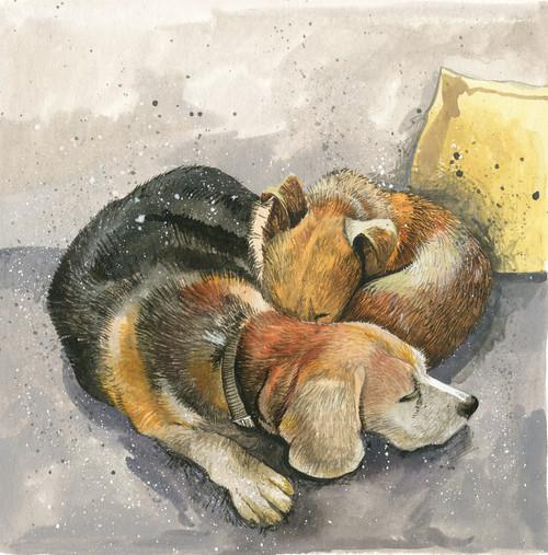 Jazz and Honey Dog Blank Card