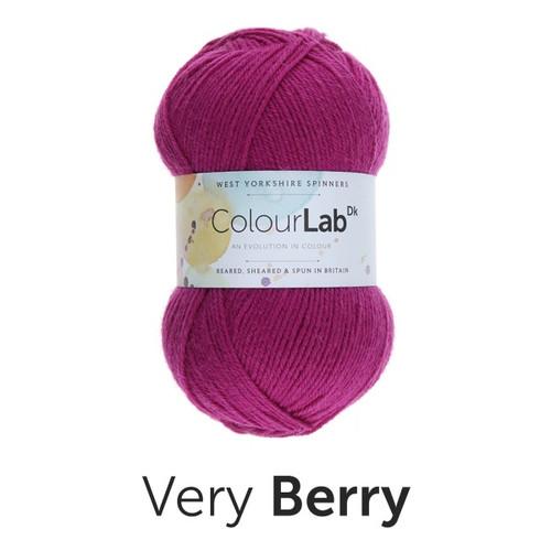 Very Berry 100% British Wool ColourLab DK (100g)