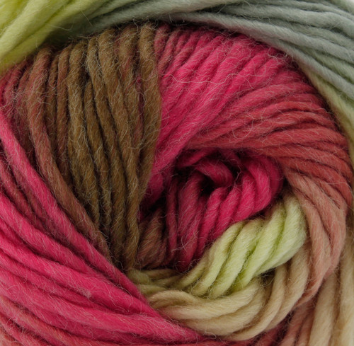 Apple Crumble Riot Chunky with 30% Wool (100g)