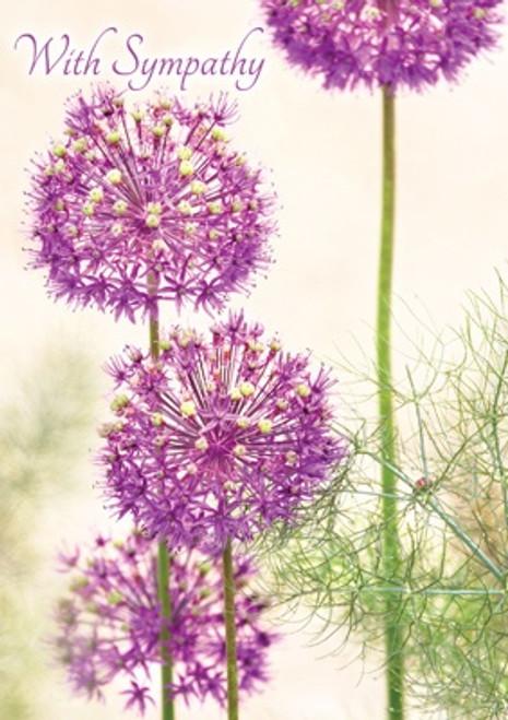 Alliums With Sympathy Card