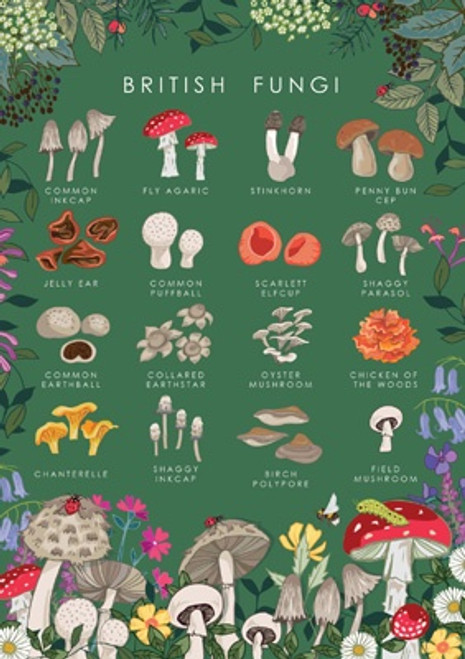 British Mushrooms Card