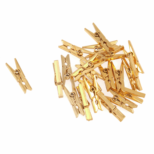 Metallic Gold Mini Pegs (20pc)