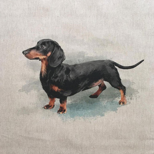 Dachshund on Natural Linen-Look Panel, 45cm/18in Square, Sold Per Panel""