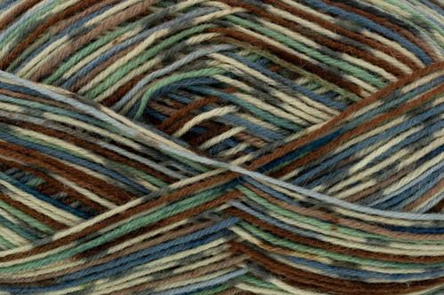 Coco Zig Zag 4 Ply Sock Wool (100g)