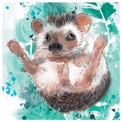 Pygmy Hedgehog Art Card