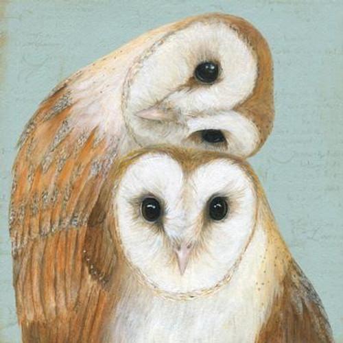 Two Barn Owls Greeting Card