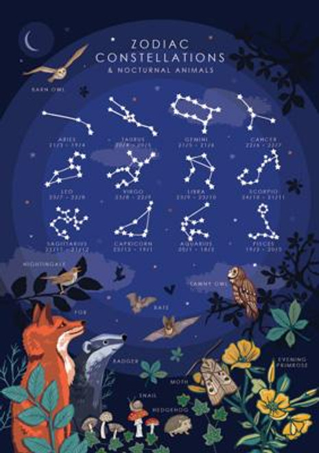 Zodiac Constellations and Nocturnal Animals Greeting Card