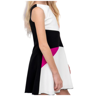 Colorblock Skater Dress
