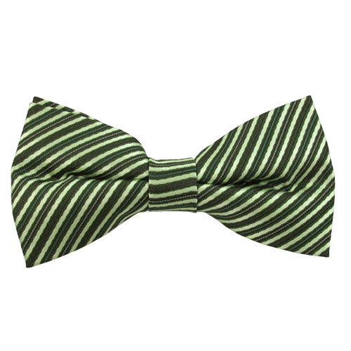 Green & Lime Even Stripe Band Bow Tie
