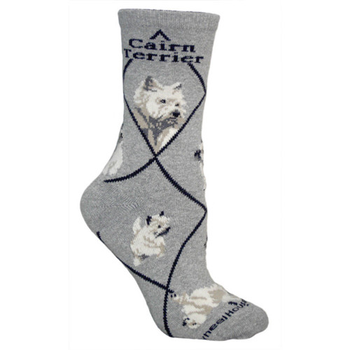 Men's Cairn Terrier on Gray Socks
