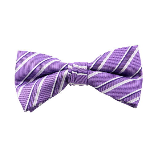 Purple & Grey Clip On Bow Tie
