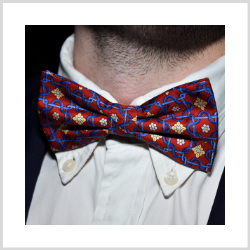 Novelty Bow Ties