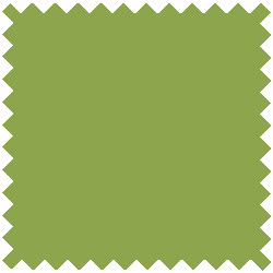 Solid Apple Green