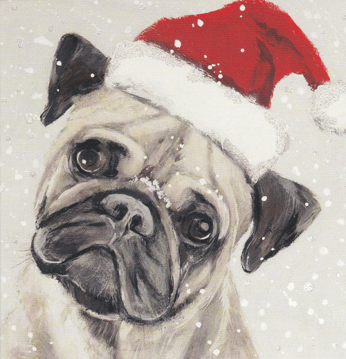 Bah Hum-Pug Pack of 6 Christmas Cards