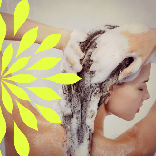 Shampoo Bar: Honey