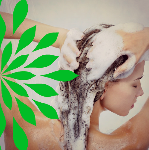 Shampoo Bar: Meadow