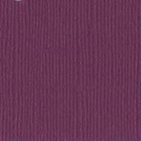 1-196 Juneberry 309007